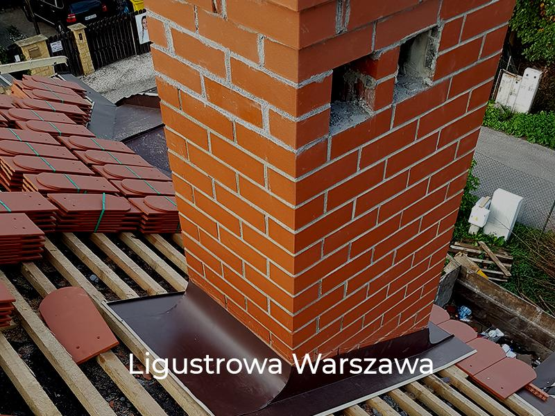 Ligustrowa-Warszawa-3