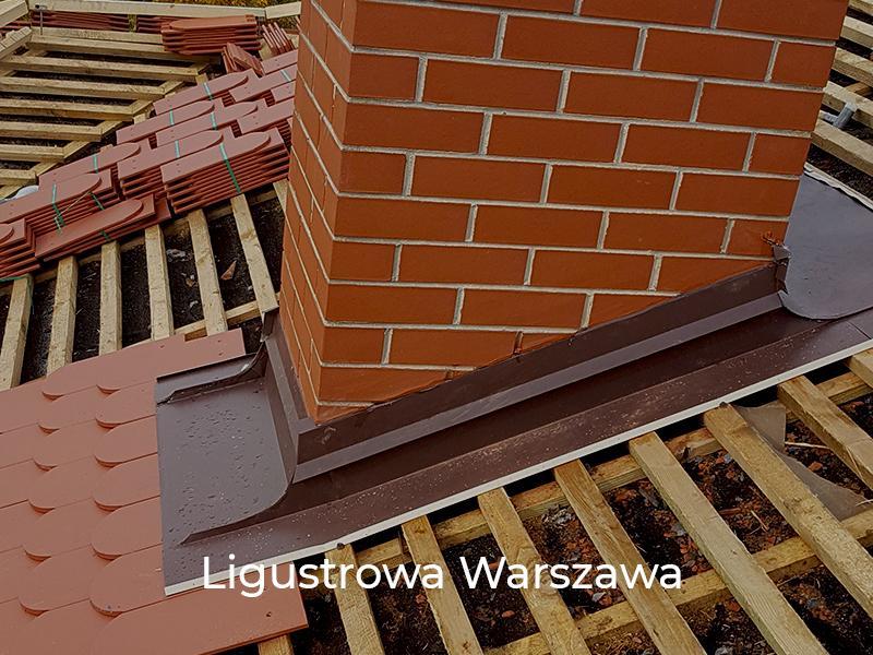 Ligustrowa-Warszawa-5