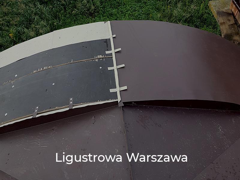 Ligustrowa-Warszawa-6