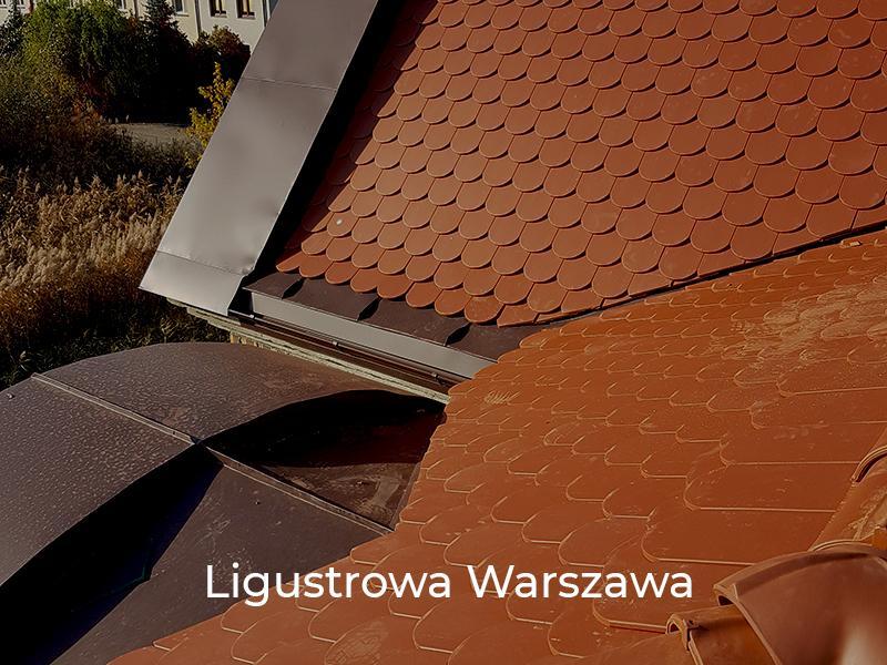 Ligustrowa-Warszawa-7