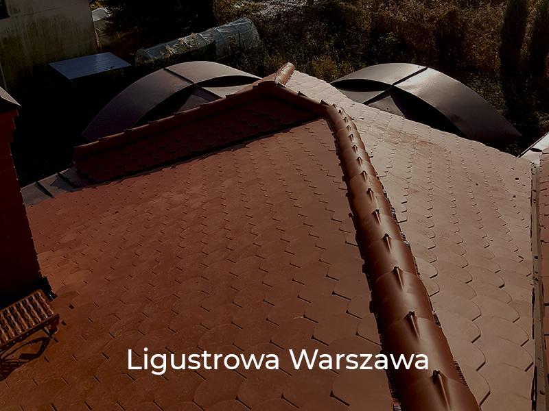 Ligustrowa-Warszawa-8