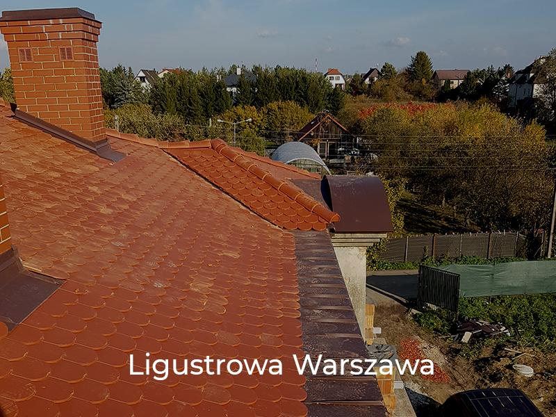 Ligustrowa-Warszawa-9